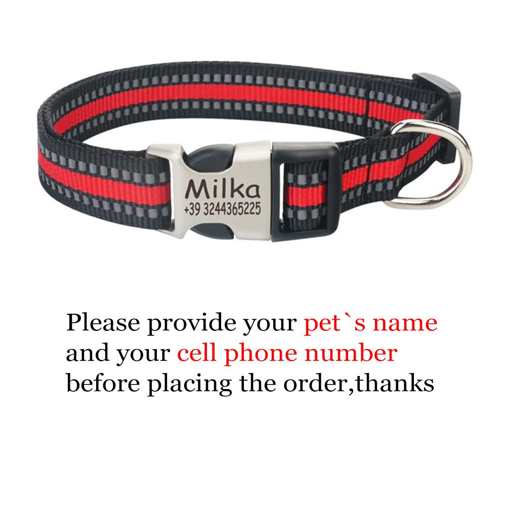 collar name.jpg